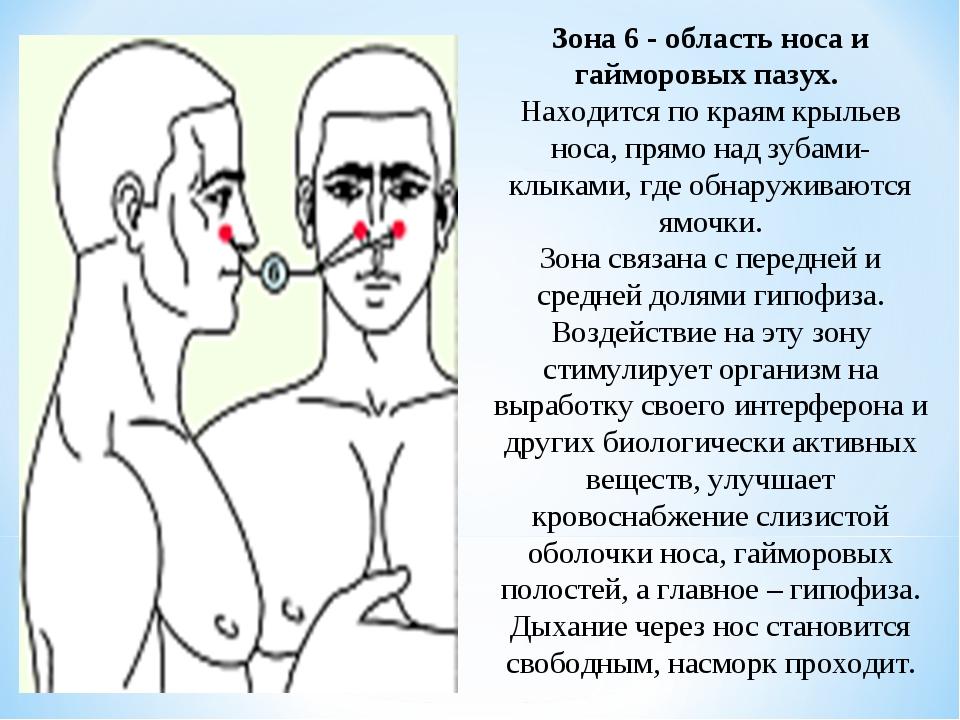 Зона 6 - область носа и гайморовых пазух. Находится по краям крыльев носа, пр...