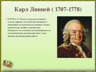 Карл Линней ( 1707-1778) В XVIII в. К. Линнейсоздал искусственную систему пр