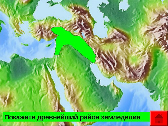Покажите материк, на котором найдены кости и орудия труда древнейших людей? П...