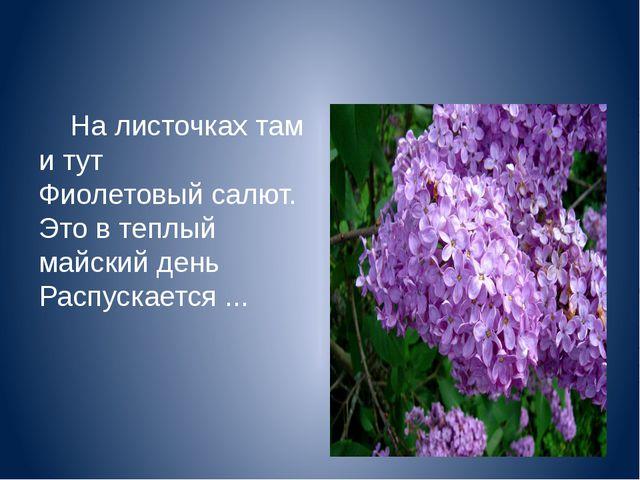 На листочках там и тут Фиолетовый салют. Это в теплый майский день Распускае...