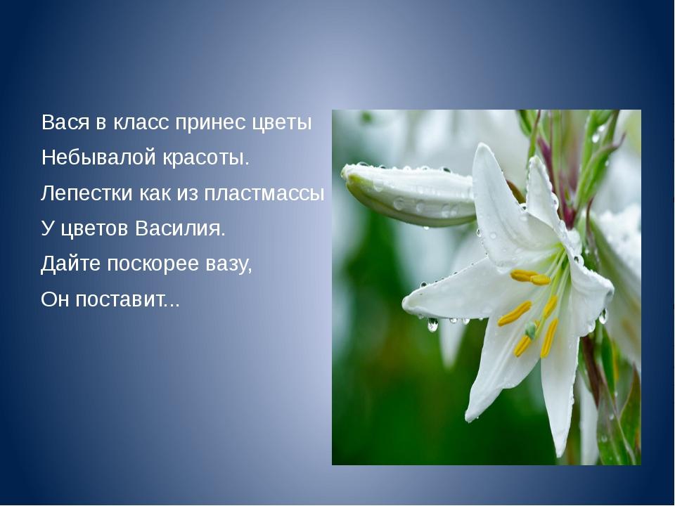 Вася в класс принес цветы Небывалой красоты. Лепестки как из пластмассы У цв...