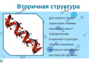Вторичная структура Для всякого белка характерна помимо первичной еще и опред