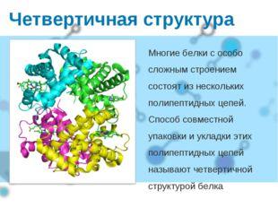 Четвертичная структура Многие белки с особо сложным строением состоят из неск