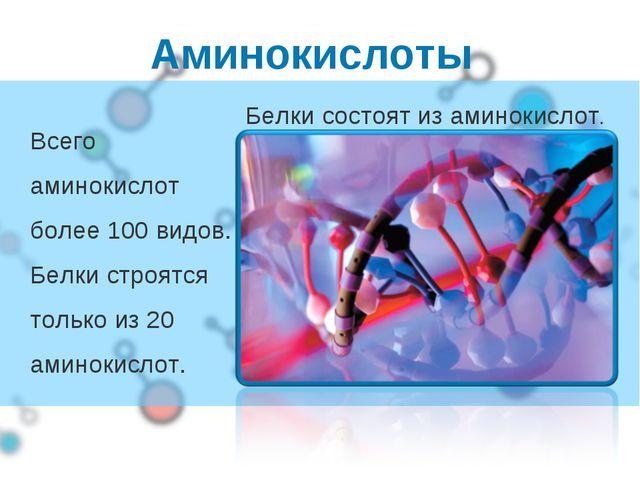 Аминокислоты Всего аминокислот более 100 видов. Белки строятся только из 20 а...