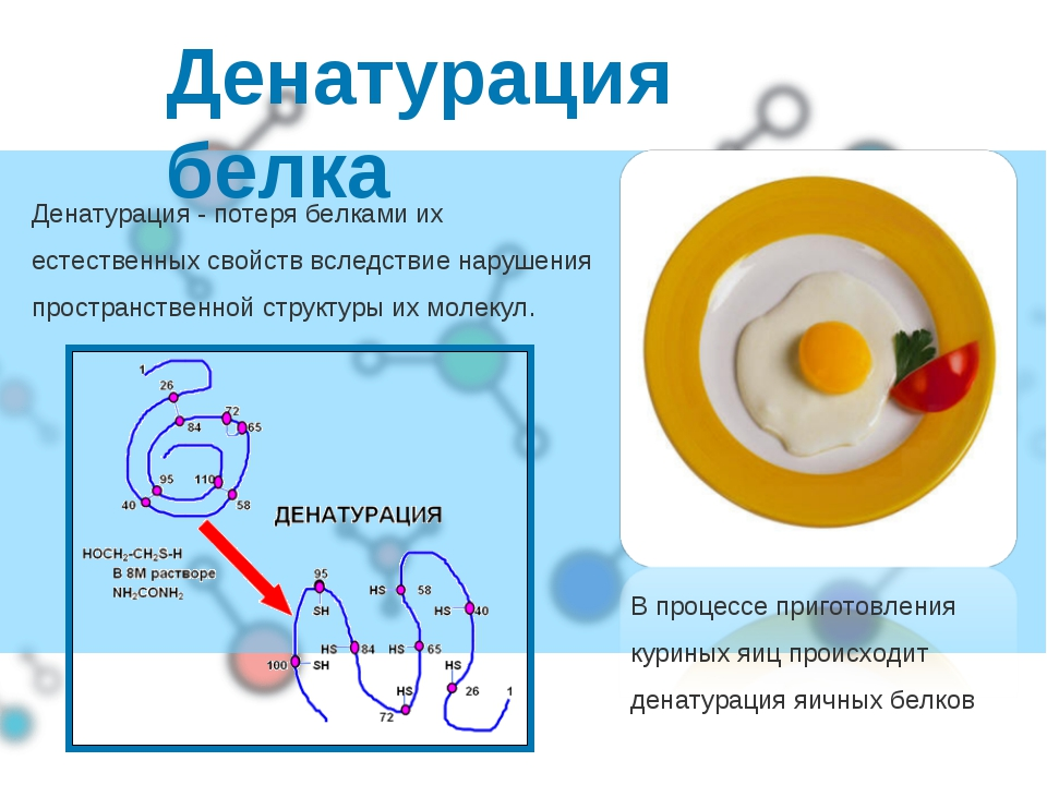 Денатурация белка В процессе приготовления куриных яиц происходит денатурация...