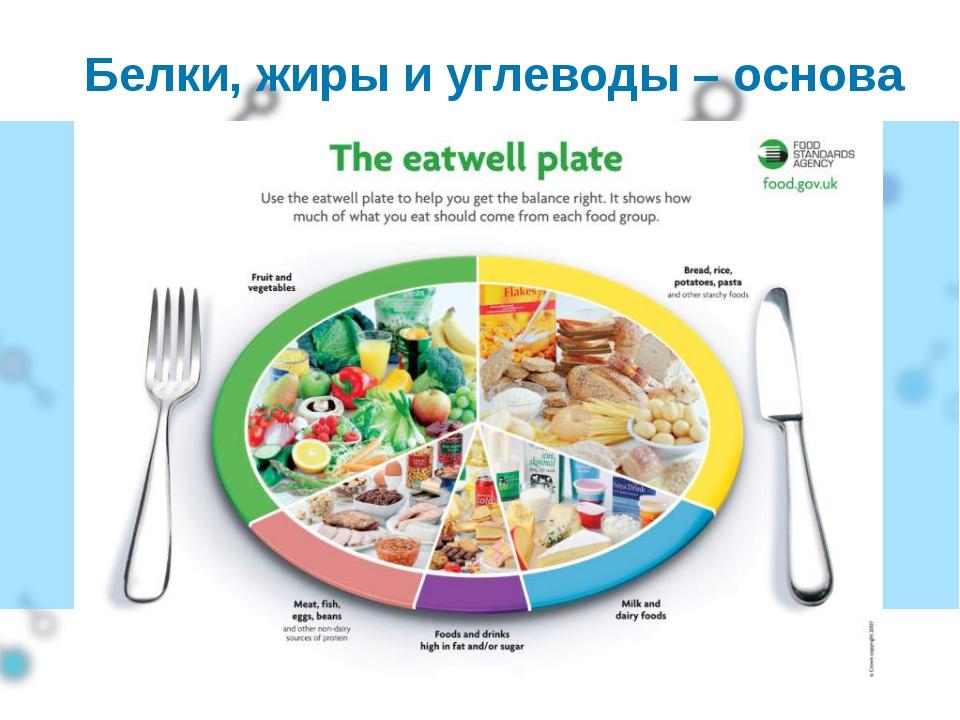 Белки, жиры и углеводы – основа питания