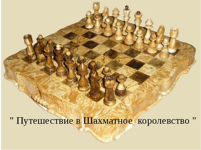 """"""" Путешествие в Шахматное королевство """""""