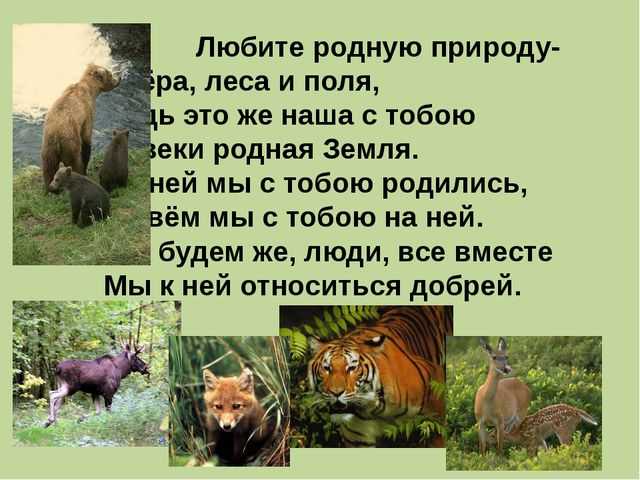 Любите родную природу- Озёра, леса и поля, Ведь это же наша с тобою На...