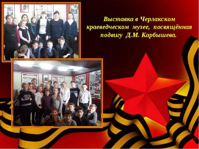 Выставка в Черлакском краеведческом музее, посвящённая подвигу Д.М. Карбышев...