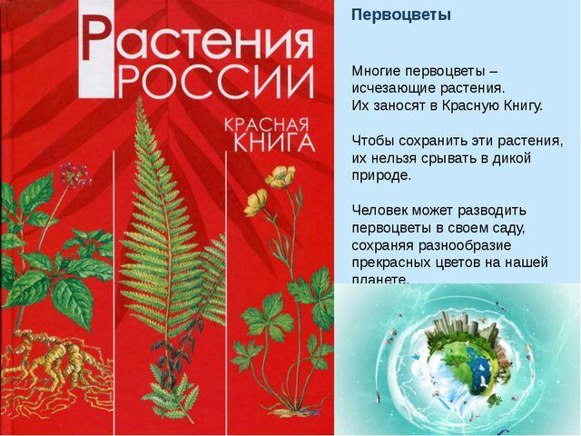 Многие первоцветы – исчезающие растения. Их заносят в Красную Книгу. Чтобы со...