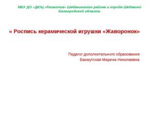 МБУ ДО «ДЮЦ «Развитие» Шебекинского района и города Шебекино Белгородской обл