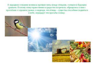 В народном сознании возникла прочная связь между птицами, солнцем и будущим у