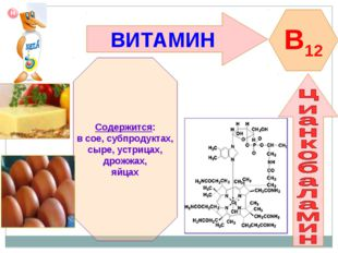ВИТАМИН B12 Содержится: в сое, субпродуктах, сыре, устрицах, дрожжах, яйцах