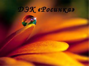 ДЭК «Росинка»