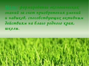 Цель: формирование экологических знаний за счет приобретения умений и навыков