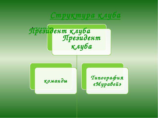 Структура клуба