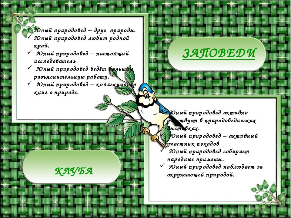 Заповеди: ЗАПОВЕДИ КЛУБА Юный природовед – друг природы. Юный природовед люби...