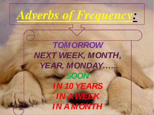 Adverbs of Frequency: TOMORROW NEXT WEEK, MONTH, YEAR, MONDAY….. SOON IN 10 Y...
