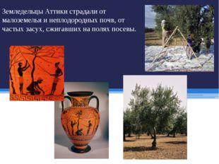 Земледельцы Аттики страдали от малоземелья и неплодородных почв, от частых за