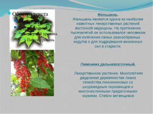 Женьшень. Женьшень является одним из наиболее известных лекарственных растени