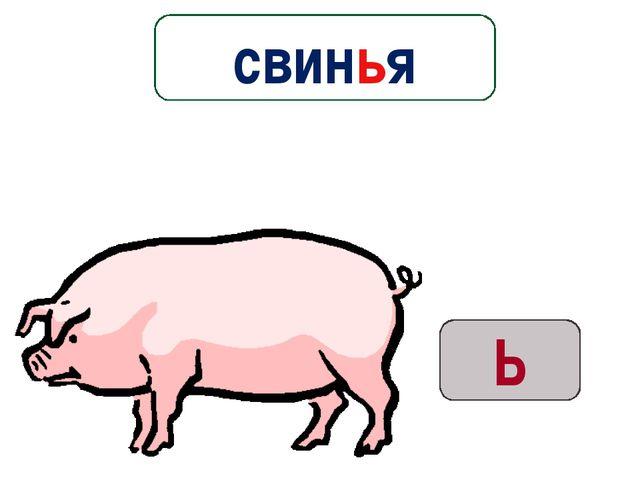 Ь свинья