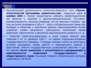 Кульминацией деятельности Святополк-Мирского стал «Проект политической програ