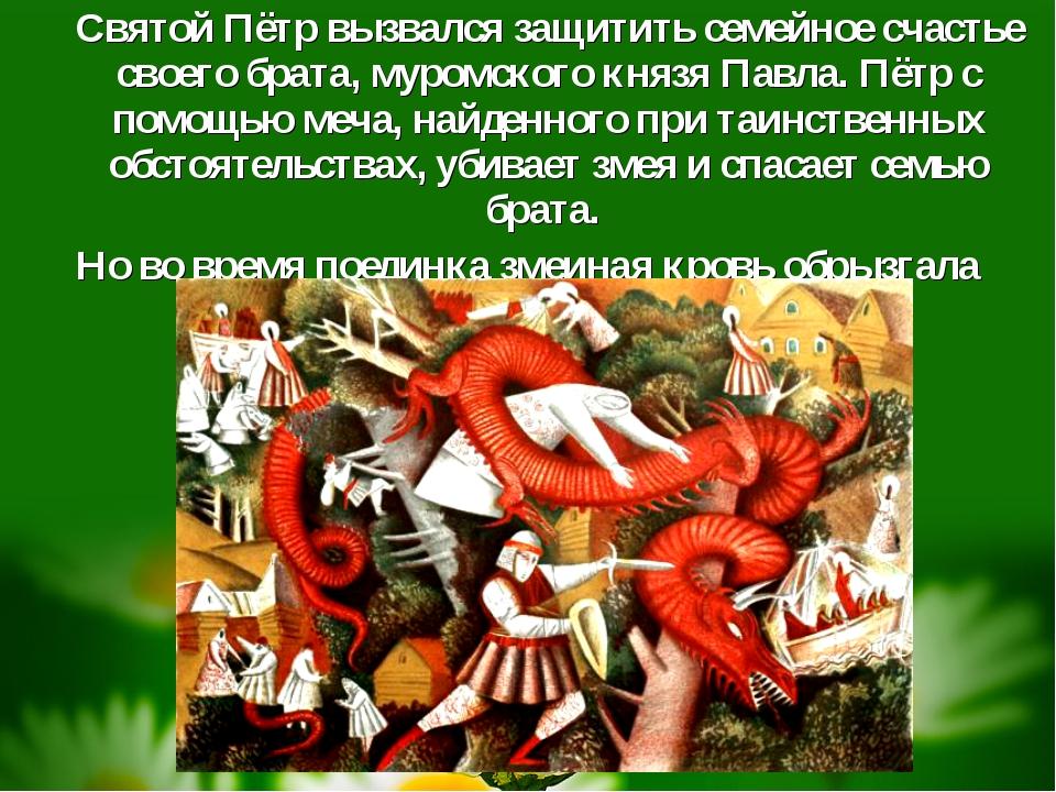 Святой Пётр вызвался защитить семейное счастье своего брата, муромского княз...