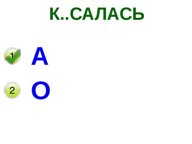 К..САЛАСЬ А О