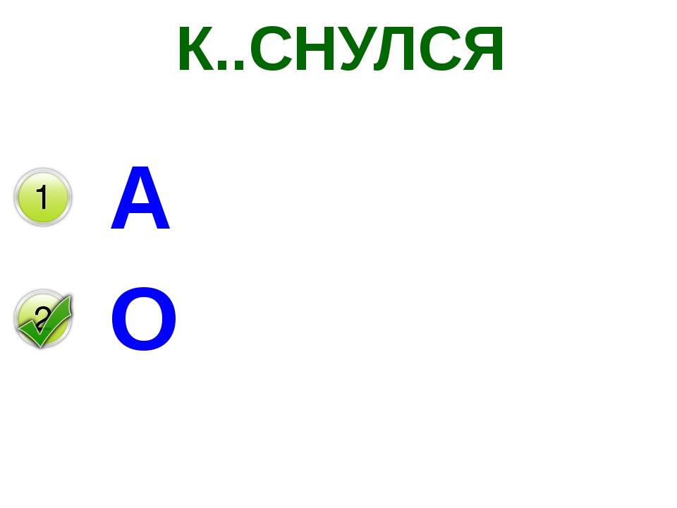 К..СНУЛСЯ А О