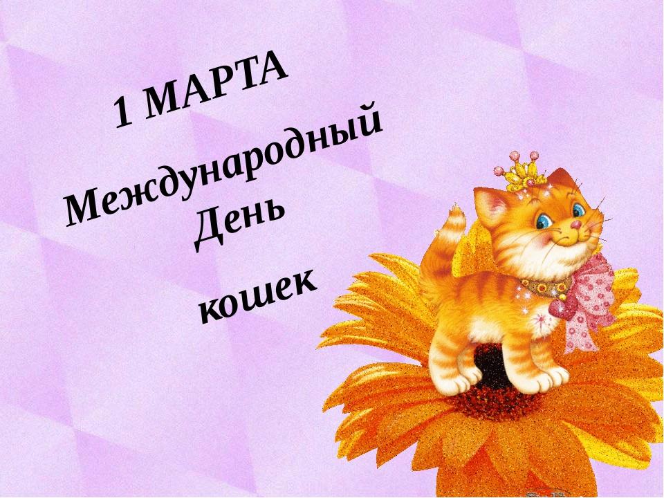 Открытки 1 марта день кошек, картинки работы