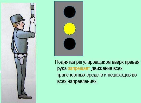 случае если сигналы регулировщика и светофоров в картинках деятельности
