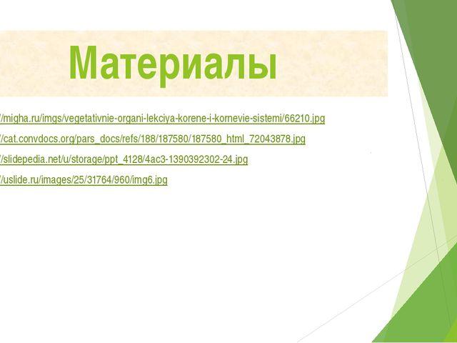 Материалы http://migha.ru/imgs/vegetativnie-organi-lekciya-korene-i-kornevie-...