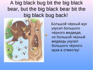 A big black bug bit the big black bear, but the big black bear bit the big bl