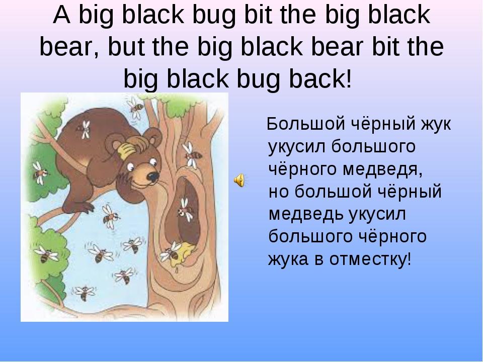 A big black bug bit the big black bear, but the big black bear bit the big bl...