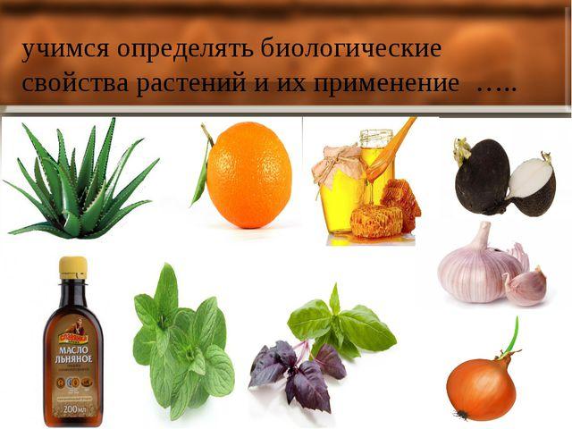 учимся определять биологические свойства растений и их применение …..