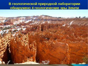 В геологической природной лаборатории обнаружено 4 геологические эры Земли