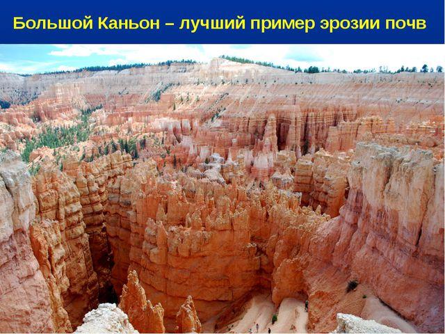 Большой Каньон – лучший пример эрозии почв