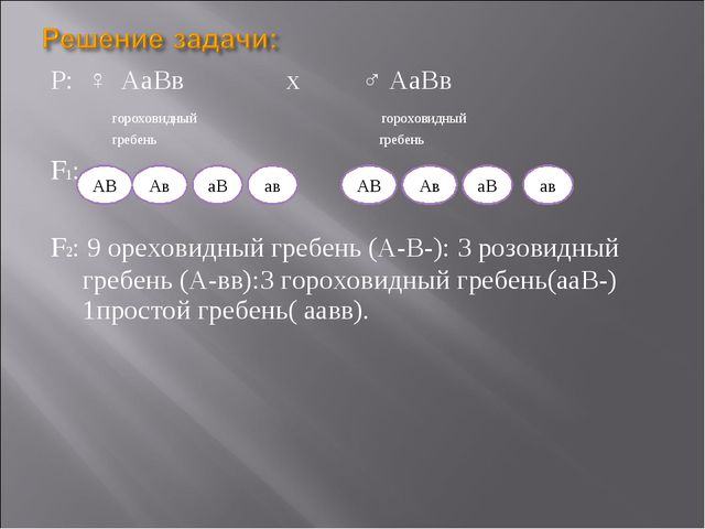 Р: ♀ АаВв х ♂ АаВв гороховидный гороховидный гребень гребень F1: F2: 9 орехов...