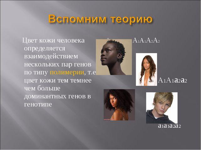 Цвет кожи человека определяется взаимодействием нескольких пар генов по типу...