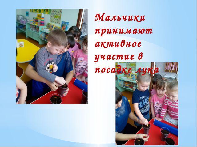 Мальчики принимают активное участие в посадке лука