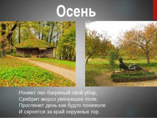 Осень Роняет лес багряный свой убор, Сребрит мороз увянувшее поле, Проглянет
