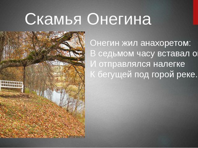 Скамья Онегина Онегин жил анахоретом: В седьмом часу вставал он летом И отпра...