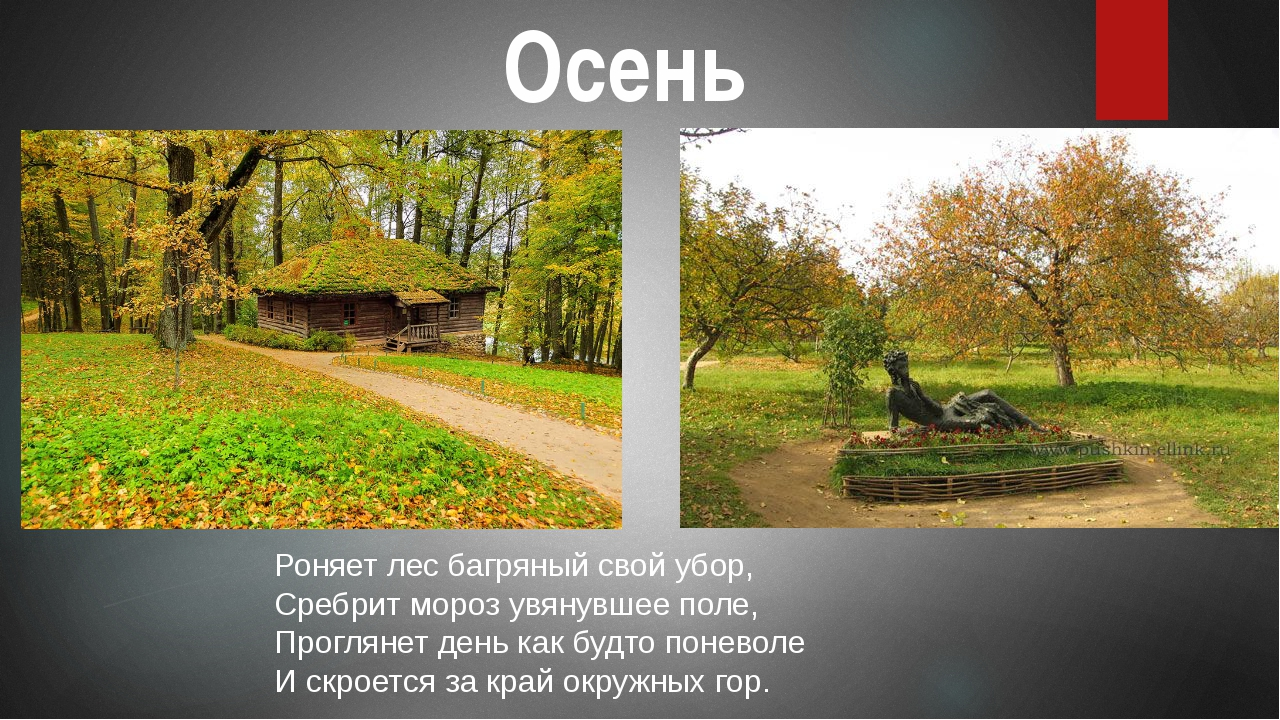 Осень Роняет лес багряный свой убор, Сребрит мороз увянувшее поле, Проглянет...