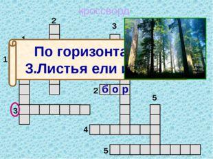кроссворд 1 2 3 4 5 5 4 3 2 1 м о ж ж е в е л ь н и к По горизонтали: 3.Лист
