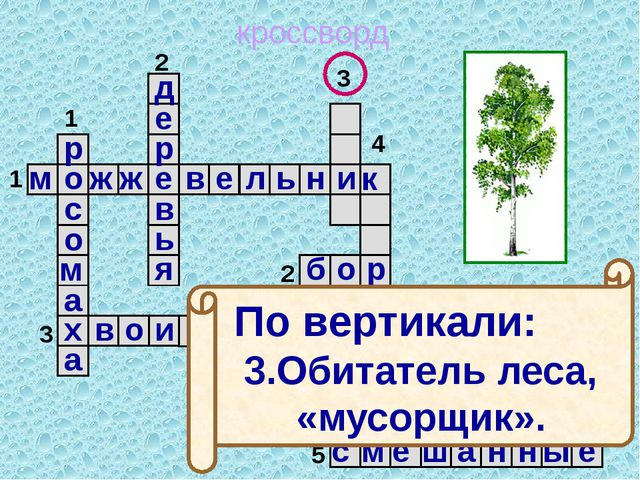 кроссворд 1 2 3 4 5 5 4 3 2 1 м о ж ж е в е л ь н и к б о р х в о и н к и м...