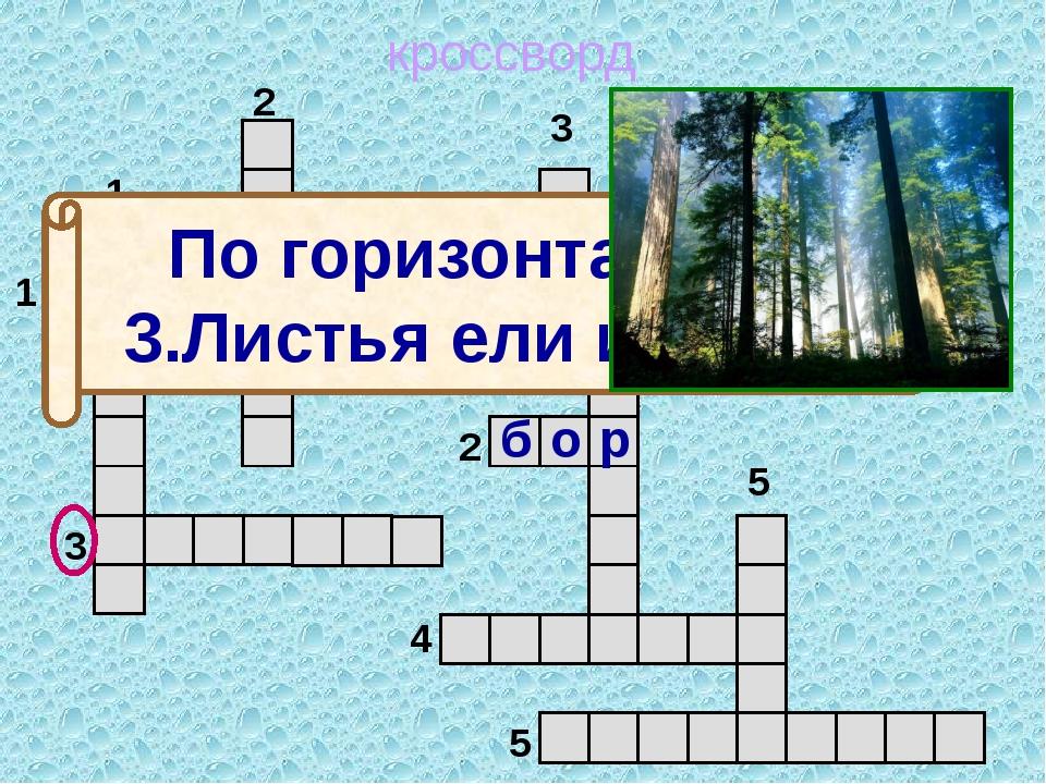 кроссворд 1 2 3 4 5 5 4 3 2 1 м о ж ж е в е л ь н и к По горизонтали: 3.Лист...