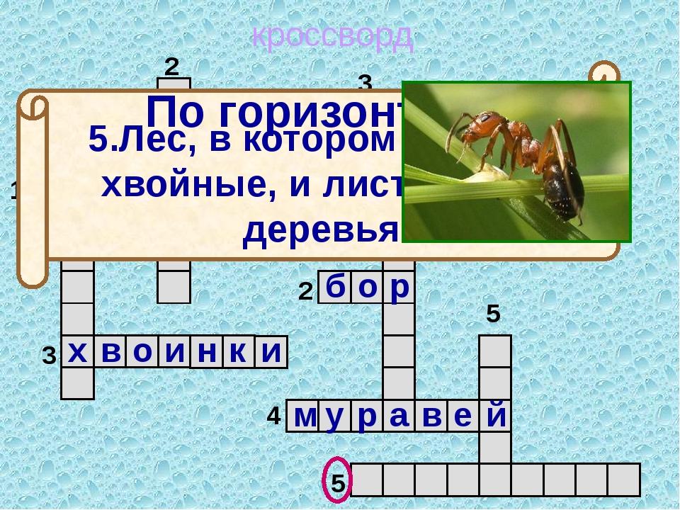 кроссворд 1 2 3 4 5 5 4 3 2 1 м о ж ж е в е л ь н и к 5.Лес, в котором расту...