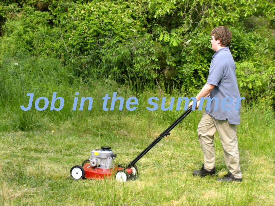 Job in the summer