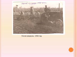 Посев кукурузы. 1956 год.