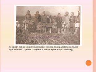 Во время летних каникул школьники совхоза тоже работали на полях: пропалывал